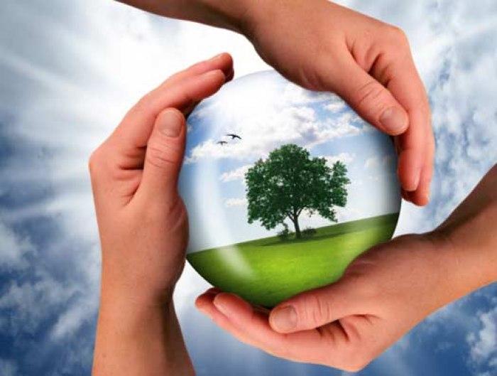 /media/post/3r98fvp/Sostenibilità-Ambientale.jpg