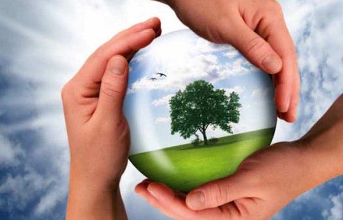 /media/post/ar7fdps/sostenibilita-ambientale-796x512.jpg