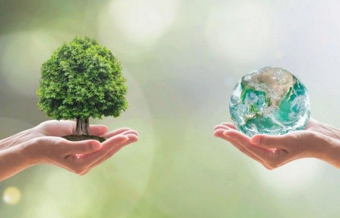 /media/post/clhqva4/bilancio_sostenibilita-796x512.jpg