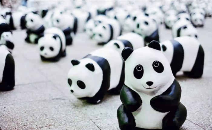 /media/post/vds3teg/panda-796x490.png